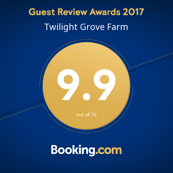 booking.com 9.9/10 rating award!